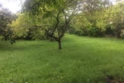 Venta terreno urbano en Luey-Val de San Vicente